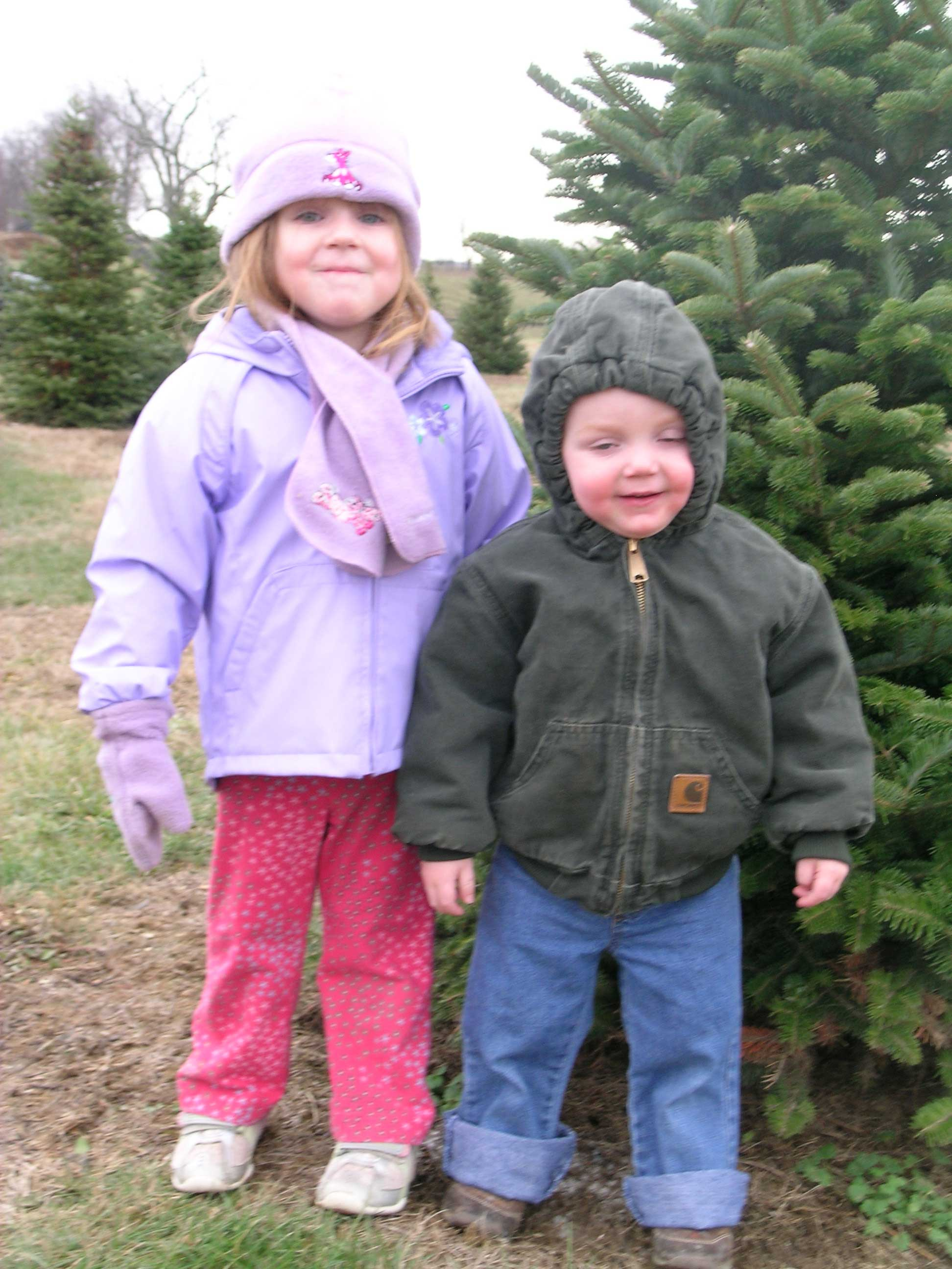 Home - Nieman Christmas Tree Farm, Lexington, KY